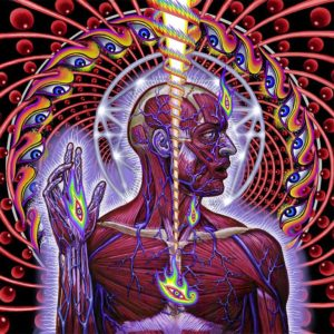 lateralus tool