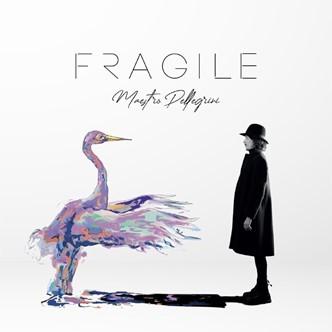 cover fragile